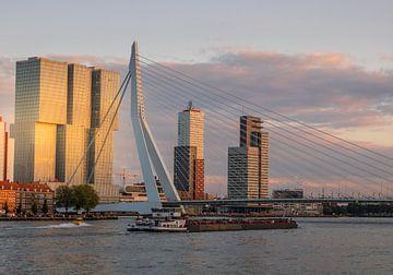 Rotterdam  Skyline van Lizanne van Spanje