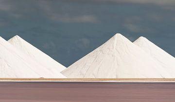 Mountains of salt van Ed van Loon