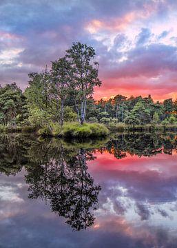 Rustig meer met bomen tijdens zonsondergang met dramatische wolken