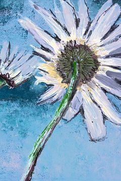 Goedemorgenbloem lichtblauw Close-up van Susanne A. Pasquay