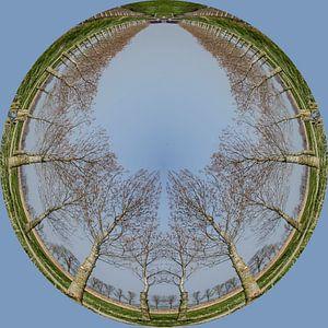 Rondje bomen, blauw. van