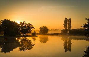 Gouden ochtend in Warmond tijdens zonsopkomst