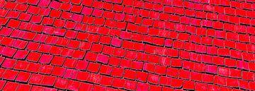 Rechthoekige uitsnede van een oud Zweeds houten dak van