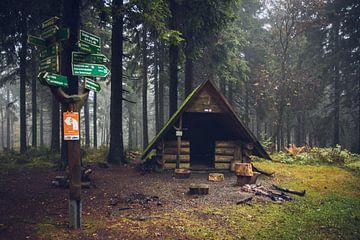 Wegweiser und Rastplatz im Wald von Suzanne Schoepe