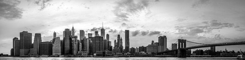 Panorama Skyline Manhattan New York City van Eddy Westdijk