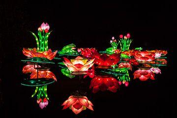 China Light von Stefan Wapstra