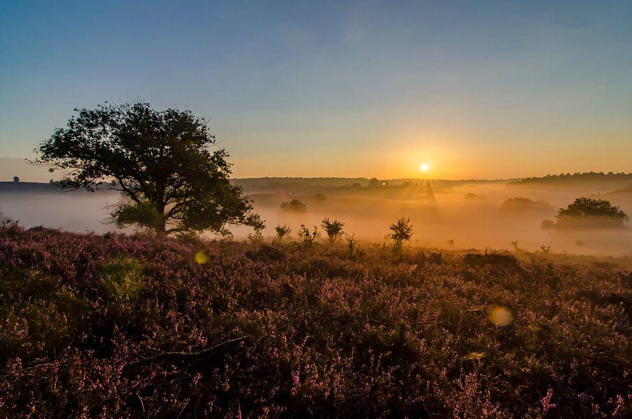 Sunset Posbank van Gerjo Horsman