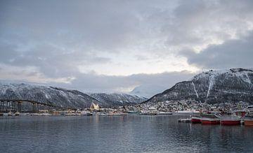 Brr..  The Arctic Cathedral, Tromso van Daniel Van der Brug