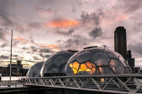 Drijvend Paviljoen van Prachtig Rotterdam
