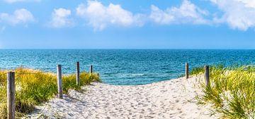 strandweg zur ostsee von Dörte Stiller