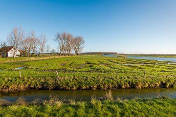 Naturschutzgebiet Breede Gooi in Dirksland von Ruud Morijn