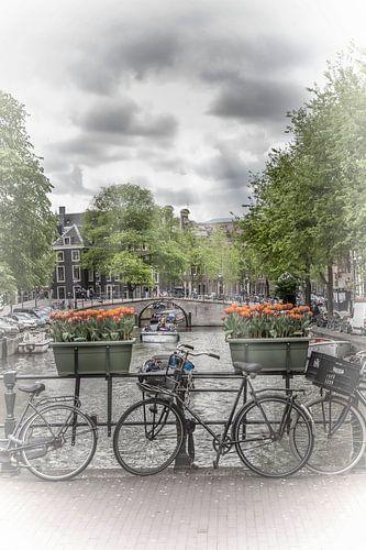 AMSTERDAM Gentlemen's Canal