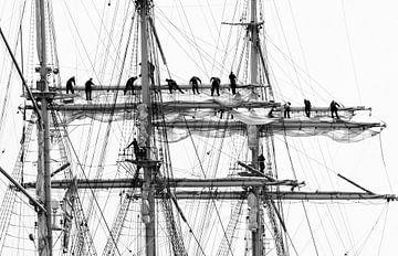 sailing von Annette Sturm