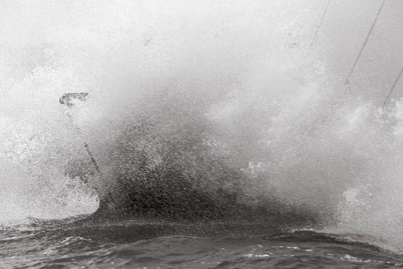 Woeste baren op het IJsselmeer van Tom Coehoorn