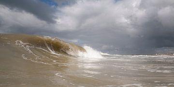 Surf 2 von Arjan van Duijvenboden