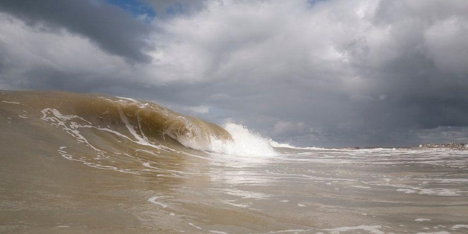 Surf 2 van Arjan van Duijvenboden