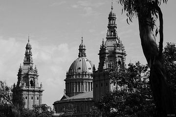 [barcelona] - ... palau reial van