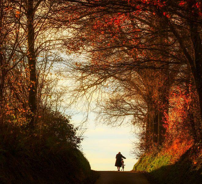 Oud vrouwtje en haar fiets van John Kreukniet