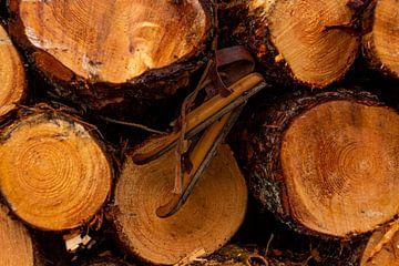 Oude houten schaatsen aan boomstammen van Berdien van Drogen