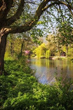 De Leidse Rijn in de lente bij Oog in Al in Utrecht (2) van De Utrechtse Grachten