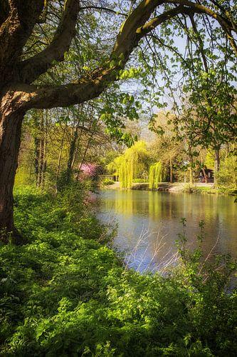 De Leidse Rijn in de lente bij Oog in Al in Utrecht (2) van