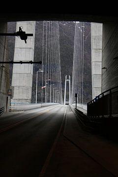 Brücke in Norwegen von Ralph van Leuveren