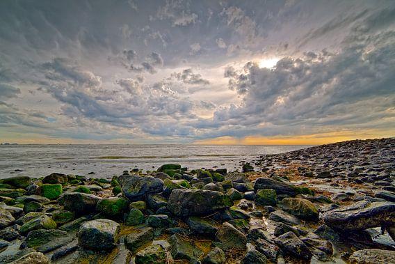 Rots kust Vlissingen van Anton de Zeeuw