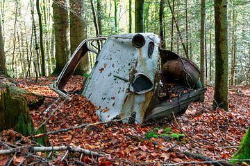 Autowrak in het bos van Jürgen Wiesler