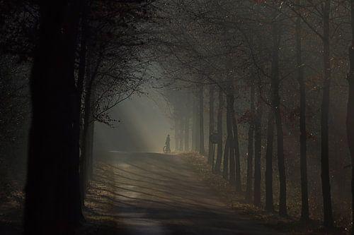 De mist in van A W