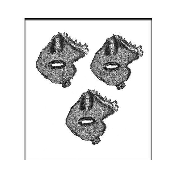 Der Mund als Gesicht von Wouter Springer