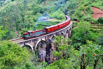 Eisenbahnbrücke Nine Arch Bridge, Sri Lanka von Inge Hogenbijl