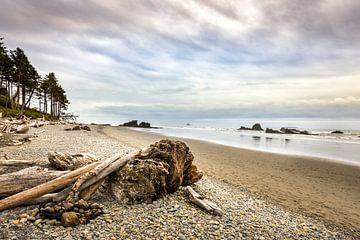 Spectaculair Robijn strand aan de Amerikaanse westkust