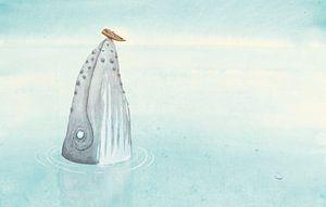 Une baleine à bosse sur