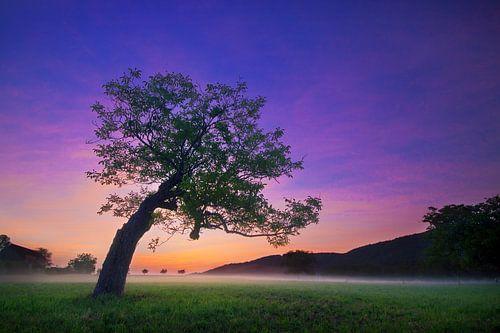Magische zonsopkomst van