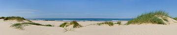 Panoramablick auf den Strand im Sommer an der Nordsee von Sjoerd van der Wal