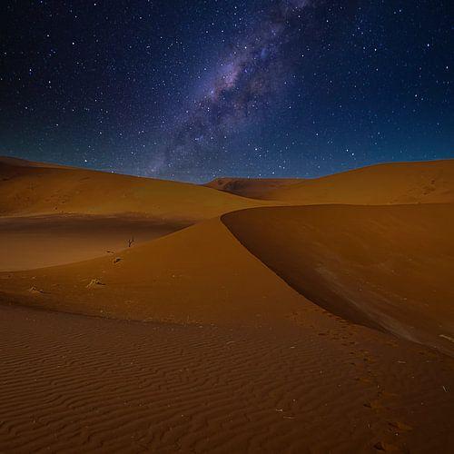 Lijnenspel in de duinen van de Sossusvlei met melkweg, Namibië