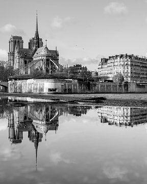Notre-Dame Reflexion über die Seine von Michaelangelo Pix