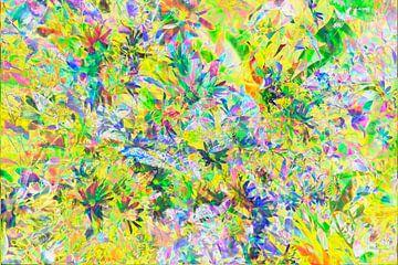 Sonnenhut (Rudbeckia fulgida), abstrakt, Blüte, von Torsten Krüger