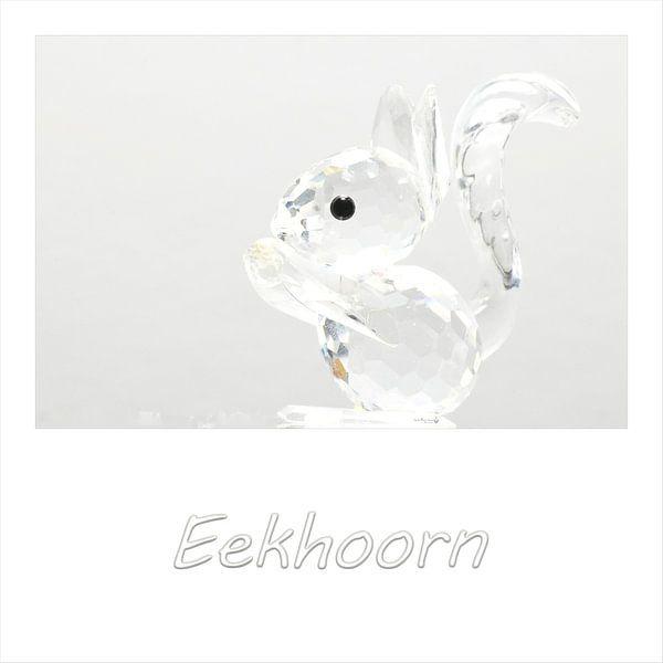 Eekhoorn van Erik Reijnders