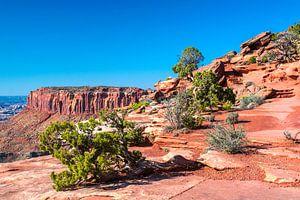 Indrukwekkend landschap van Canyonlands Nationaal Park, Utah