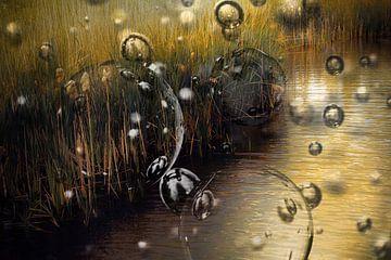 Bubbels zwevend over water en riet van Carin Klabbers