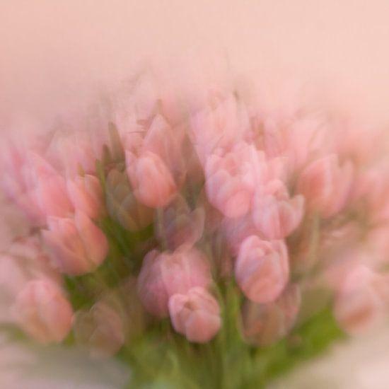 Tulips (my way)