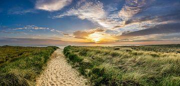 Texel Nordsee Dünen Sonnenuntergang von Texel360Fotografie Richard Heerschap