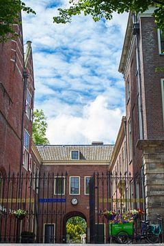 De Hortus Leiden van Leanne lovink