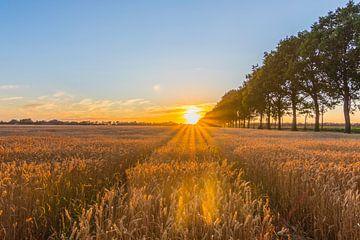 Zonsondergang van Johan Mooibroek