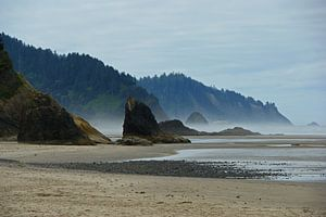 Ruig westkust strand in Oregon
