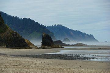 Zerklüfteter Westküstenstrand in Oregon von Jeroen van Deel