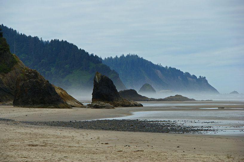 Ruig westkust strand in Oregon van Jeroen van Deel