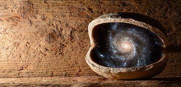 Universe in een walnoot van Sarah Richter