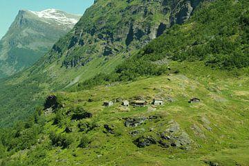 Traditionele boerenverblijven in bergen boven Geiranger Noorwegen van